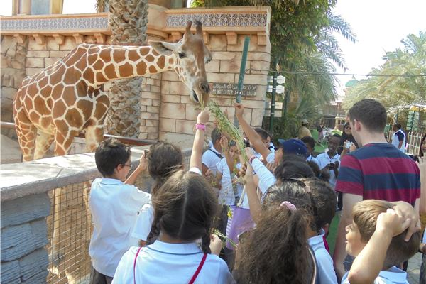 Gr 4 trip to Abu Dhabi kids park